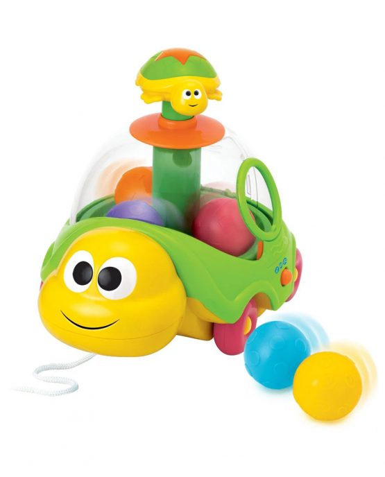 Winfun 0660 Pull N Spin Turtle Toy