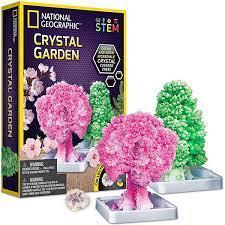 National Geographic RTNGCRYSGRDN Crystal Garden
